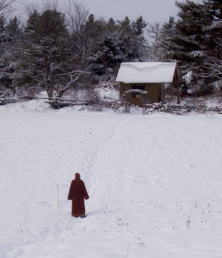 the-dhamma-of-snow-bhikkhunis-kuti